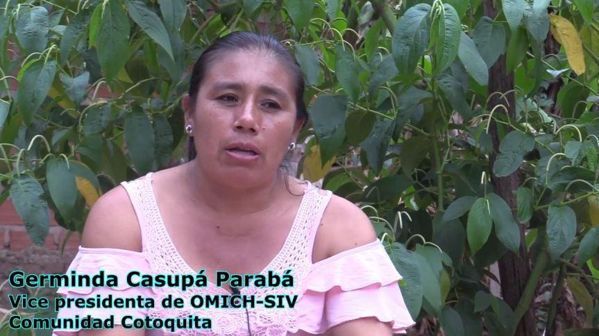Videos testimoniales que nos facilitó la CNAMIB sobre los incendios en laChiquitanía