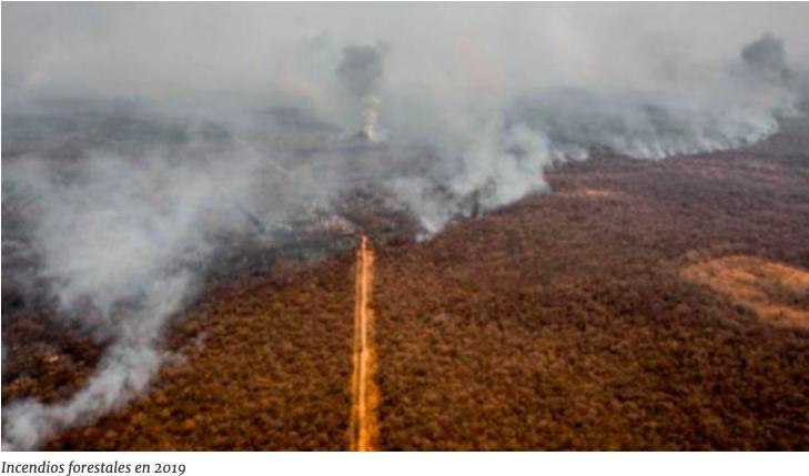 TIDN pide a Áñez un informe sobre las normas'incendiarias'