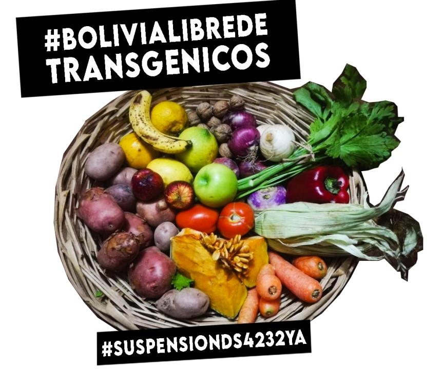 Nota de Prensa de la Asamblea por los Bosques y la Vida Bolivia: 10 ARGUMENTOS DE RÉPLICA CONTRA EL AGRONEGOCIO Y SUS TRANSGÉNICOS ENBOLIVIA