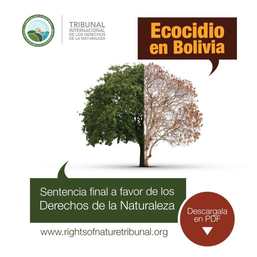 Veredicto final del caso: Chiquitanía, Chaco y Amazonía vs. Estado Plurinacional deBolivia