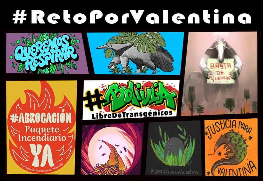 ¿Quieres justicia para Valentina y los millones de animalesincendiados?
