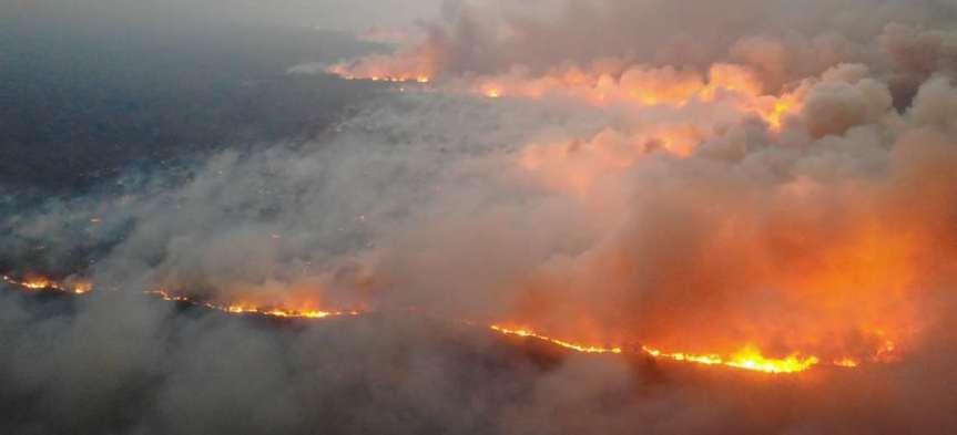 Bolivia ocupa el tercer lugar mundial en destrucción de bosques ¿y laPachamama?