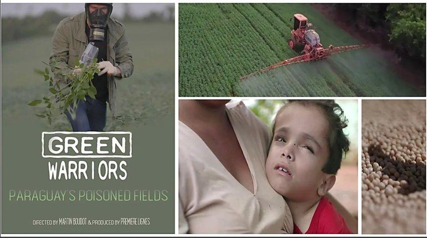 'Los campos envenenados de Paraguay', el documental que los ganaderos no quieren queveas