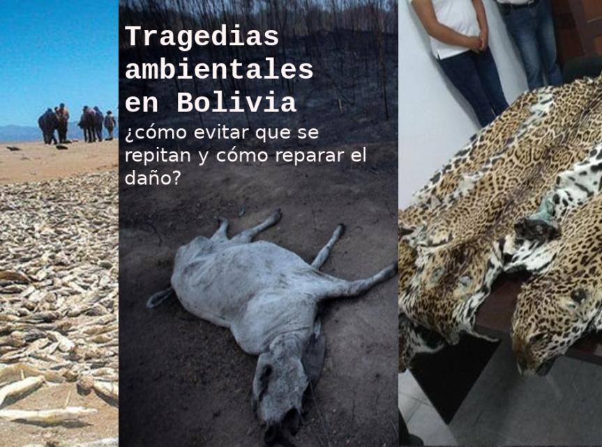 """Cinco tragedias ambientales en Bolivia: ¿qué hacer en el """"Día Mundial del Medio Ambiente""""?"""